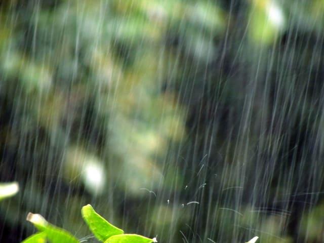 雨天が競艇のレース展開に及ぼす影響